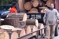 firewood-thumbnail-a3-3